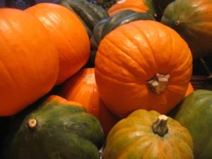 """pompions"" aka pumpkins & acorn squashes"